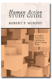 murphy guide to mises